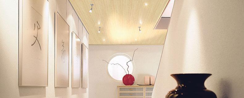 Revestimientos de pared y techo maderas jose maria - Revestimientos para techos ...